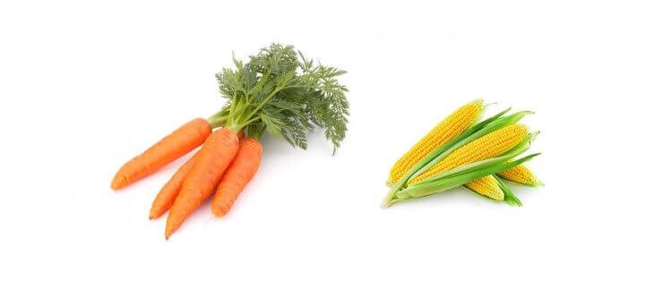 Marchew i kukurydza z zawartością alfa i beta karotenów