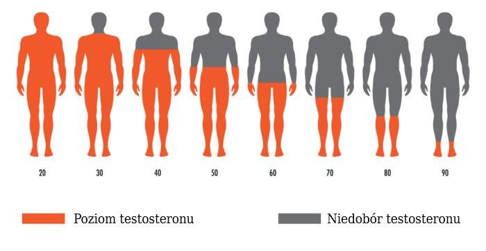 Zmiana poziomu testosteronu wraz z wiekiem